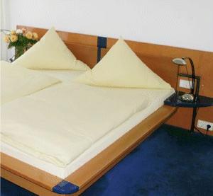 hotel flohr singen berlingen a ried pensionhotel. Black Bedroom Furniture Sets. Home Design Ideas