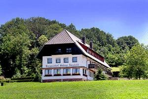 pension sch ne aussicht lahr langenhard pensionhotel. Black Bedroom Furniture Sets. Home Design Ideas